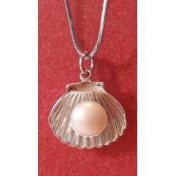 Pärl hõbedases pärlikarbis