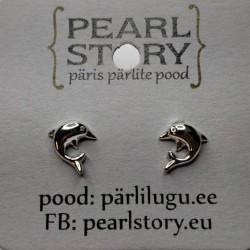 Dolphin stud earrings